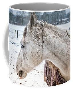 A Girlfriend Of The Horse Amigo Coffee Mug