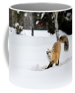 Coffee Mug featuring the photograph A Good Stretch by Ronnie and Frances Howard