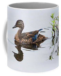 A Graceful Swim Coffee Mug