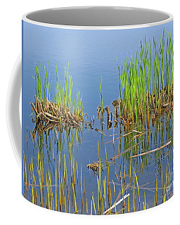 A Greening Marshland Coffee Mug by Ann Horn