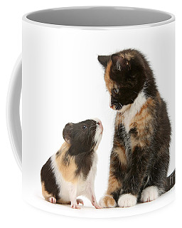 A Guinea For Your Thoughts Coffee Mug