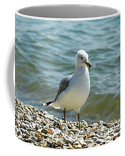 A Handsome Fellow Coffee Mug