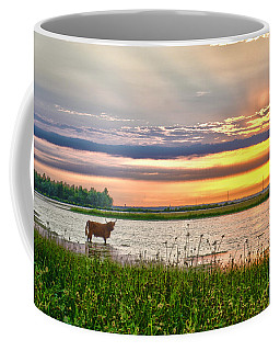 A Highland Cow In The Lowlands Coffee Mug