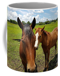 A Horse's Touch Coffee Mug