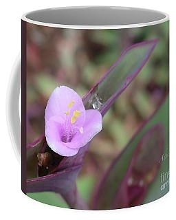 A Lavender Smile - Tradescantia Pallida Coffee Mug