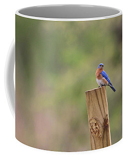 A Little Bluebird Coffee Mug