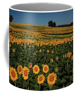 Coffee Mug featuring the photograph A Lot Of Birdseed  by Chris Berry