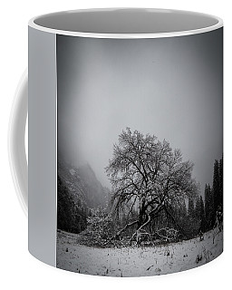 A Magic Tree Coffee Mug