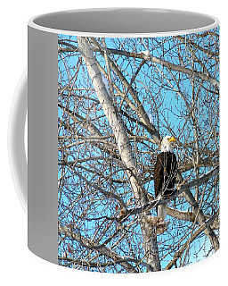 Coffee Mug featuring the photograph A Majestic Bald Eagle by Will Borden