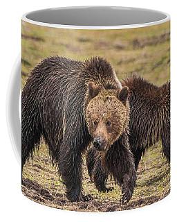 A Mini-mom And Yearling Coffee Mug