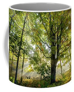 A Misty Fall Morning Coffee Mug