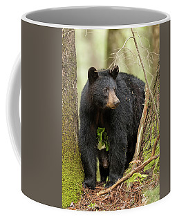 A Mothers Love Coffee Mug