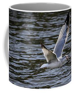 A Mouth Full Coffee Mug by Ray Congrove