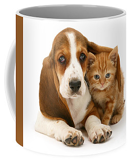 A New Meaning To Cat Flap Coffee Mug