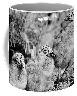Coffee Mug featuring the photograph 3 Amigos by John F Tsumas