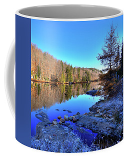 Coffee Mug featuring the photograph A November Morning On The Pond by David Patterson