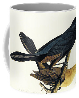 A Pair Of Boat Tailed Grackles Coffee Mug