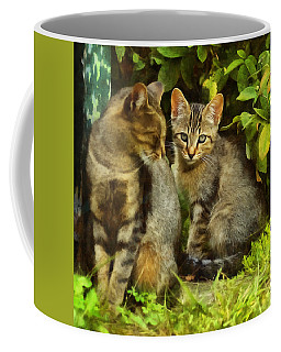 A Pair Of Feral Cats Coffee Mug