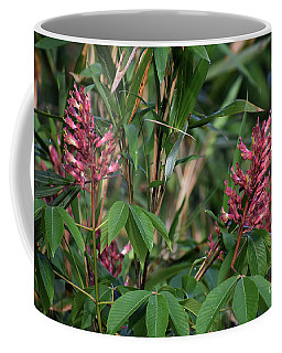 Coffee Mug featuring the photograph A Pair Of Wild Beauties by Skip Willits