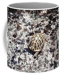 A Pal We Found In Greece Coffee Mug