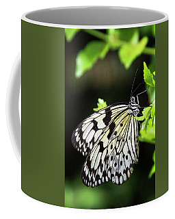 Coffee Mug featuring the photograph A Paper Kite Butterfly On A Leaf  by Saija Lehtonen