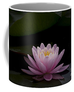A Perfect Bloom Coffee Mug