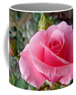 Coffee Mug featuring the photograph A Perfect Pink Rose by Betty-Anne McDonald