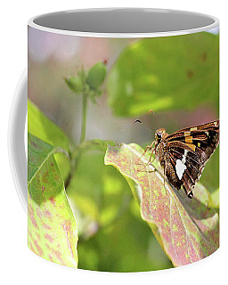 Coffee Mug featuring the photograph A Place Of Rest by Trina Ansel