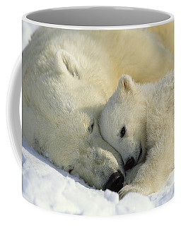 A Polar Bear And Her Cub Napping Coffee Mug