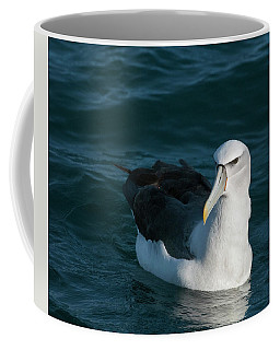 A Portrait Of An Albatross Coffee Mug