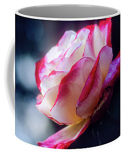Coffee Mug featuring the photograph A Red And White Rose by John Brink