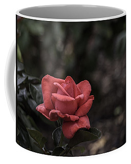 A Red Beauty Coffee Mug by Ed Clark