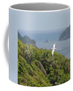 A Red-billed Tropicbird (phaethon Coffee Mug