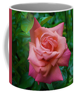 A Rose In Spring Coffee Mug