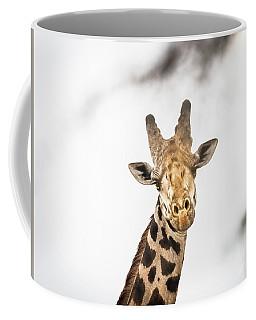 A Rothchild Coffee Mug
