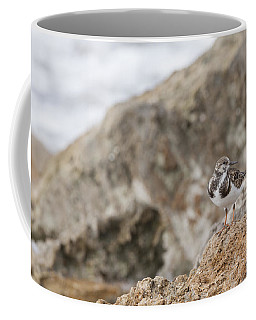 A Ruddy Turnstone Perched On The Rocks Coffee Mug