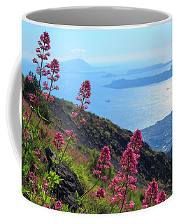 A Scenic View From Mount Vesuvius Coffee Mug