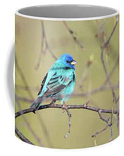 A Shiny Blue Gem Coffee Mug