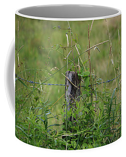 Coffee Mug featuring the photograph A Simple Post by Rick Morgan