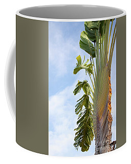 Coffee Mug featuring the photograph A Slice Of Nature by Ana Mireles