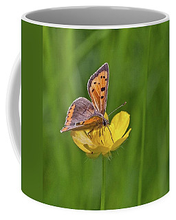 A Small Copper Butterfly (lycaena Coffee Mug