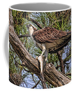 Coffee Mug featuring the photograph A Speckled Trout Breakfast by HH Photography of Florida