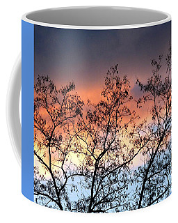 Coffee Mug featuring the photograph A Splendid Silhouette by Will Borden