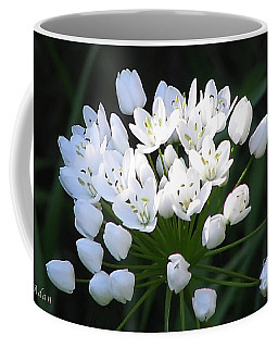 Coffee Mug featuring the photograph A Spray Of Wild Onions by Felipe Adan Lerma