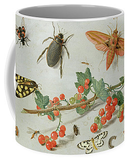 A Sprig Of Redcurrants With An Elephant Hawk Moth, A Magpie Moth And Other Insects, 1657 Coffee Mug