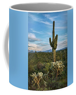 Coffee Mug featuring the photograph A Spring Evening In The Sonoran  by Saija Lehtonen