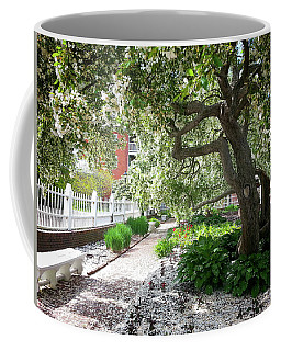 A Springtime Carpet Of White Petals From A Tree Coffee Mug