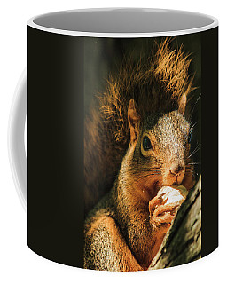 A Squirrel And His Nut Coffee Mug