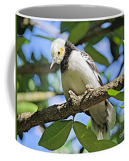 A Starling To Remember Coffee Mug