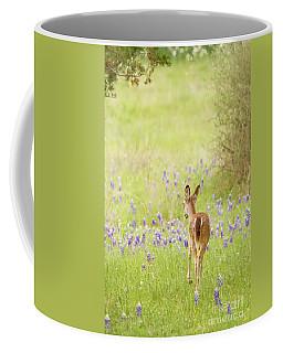 A Stroll In The Bluebonnets Coffee Mug